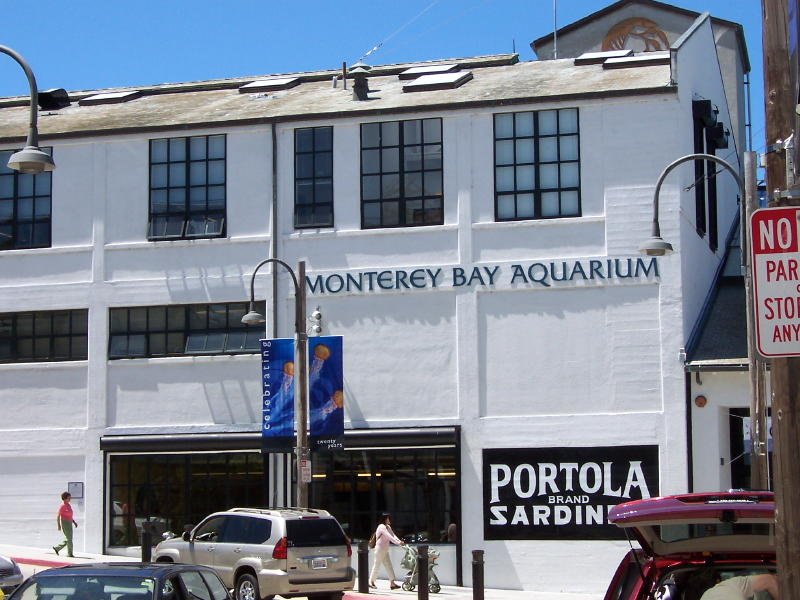 The major stop on the tour is Monterey, CA.  Dennis, Dave and Jim visit the Monterey Aquarium.