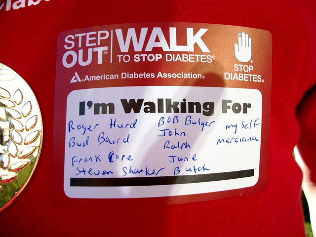 The list of walkers Dennis was walking for this year.