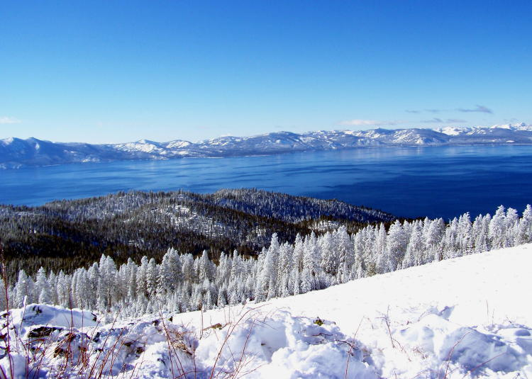 Christmas In Lake Tahoe.Mcgrath Wagner Com Snow White South Lake Tahoe Christmas